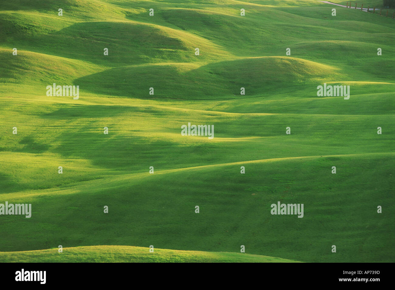 Pure green fairway on golf course at Costa del Sol in Spain - Stock Image