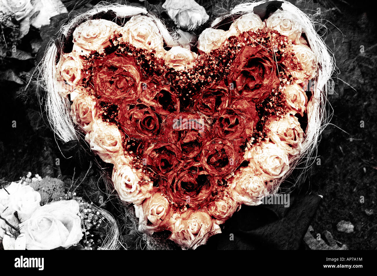 Decay Love Heart Roses Funeral Gothic Symbolic Flowers Romance Sadness Sorrow Loss Death Negative Depression Unrequited