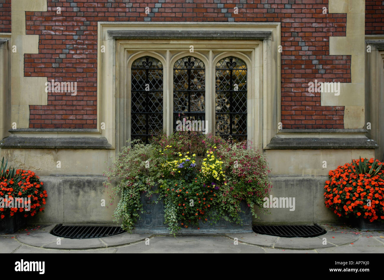 Close up of flowers outside the Great Hall Lincoln's Inn Holborn London England - Stock Image