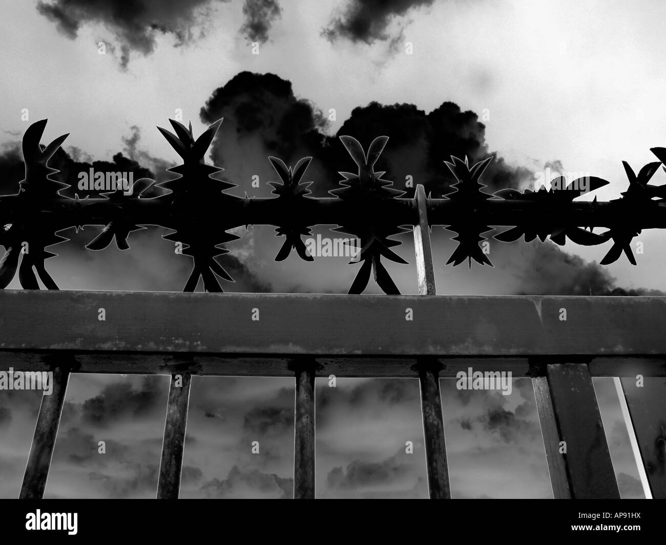 Barbed Wire on Security Gate - Stock Image