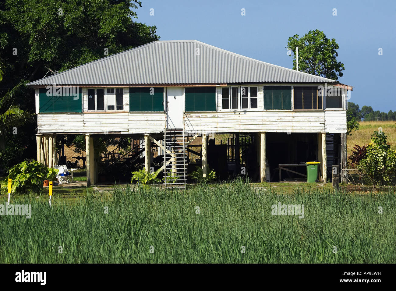 Queenslander House and Sugar Cane Field Cairns North ...