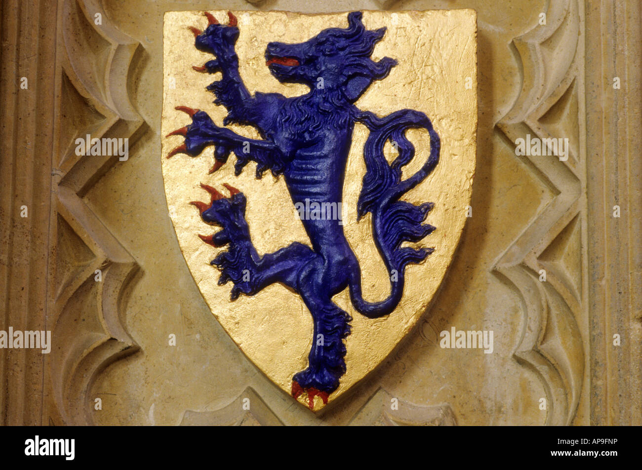 Coat of Arms blue rampant lion gold shield Lincoln Cathedral Lincolnshire England IK heraldic device heraldry Medieval - Stock Image