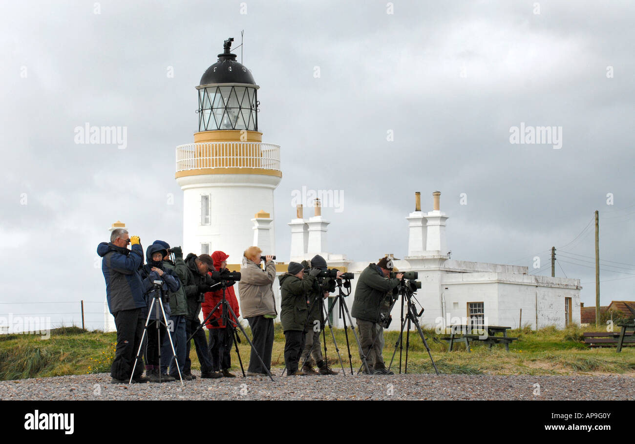DOLPHIN WATCHERS AND PHOTOGRAPHERS AT CHANONRY POINT,NEAR ROSEMARKIE IN THE MORAY FIRTH,NORTH EAST SCOTLAND,UK. - Stock Image
