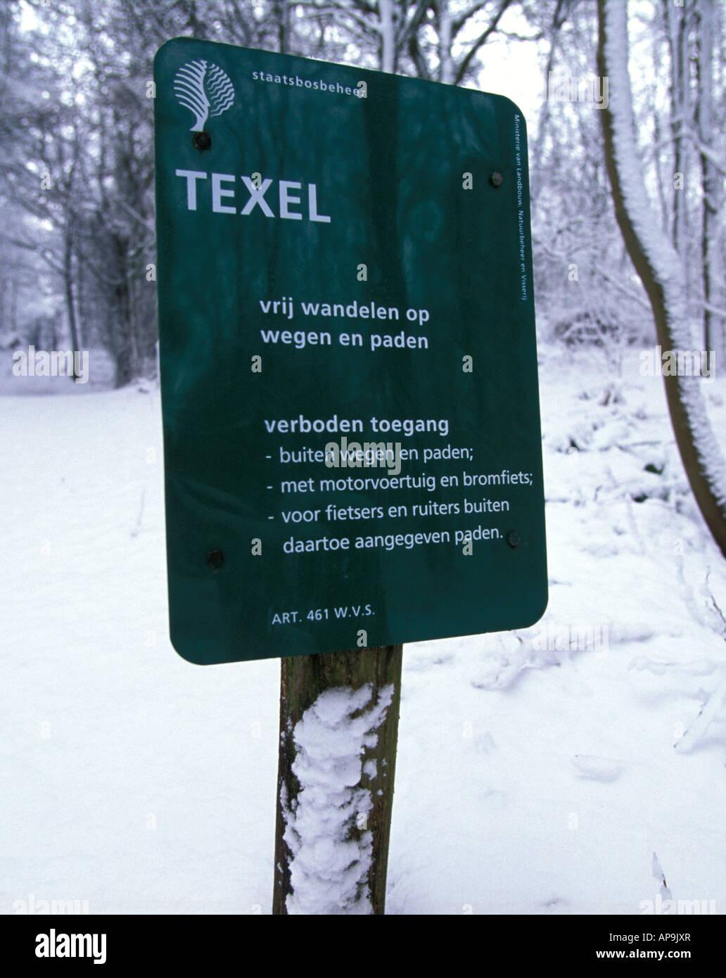 Texel wintertime the forest De Dennen staatsbosbeheer - Stock Image