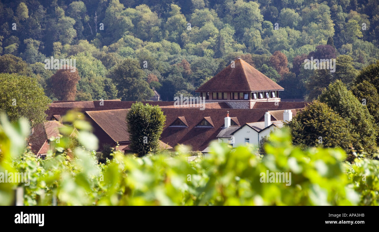 Denbies vineyard estate buildings, Surrey, England - Stock Image