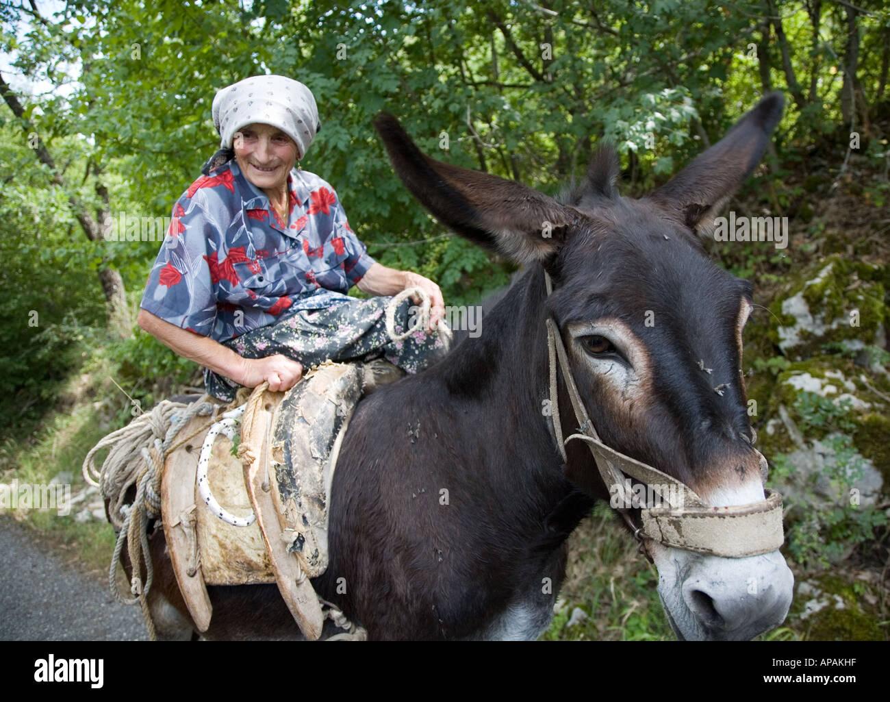 Old Lady With Donkey Sepina Italy - Stock Image