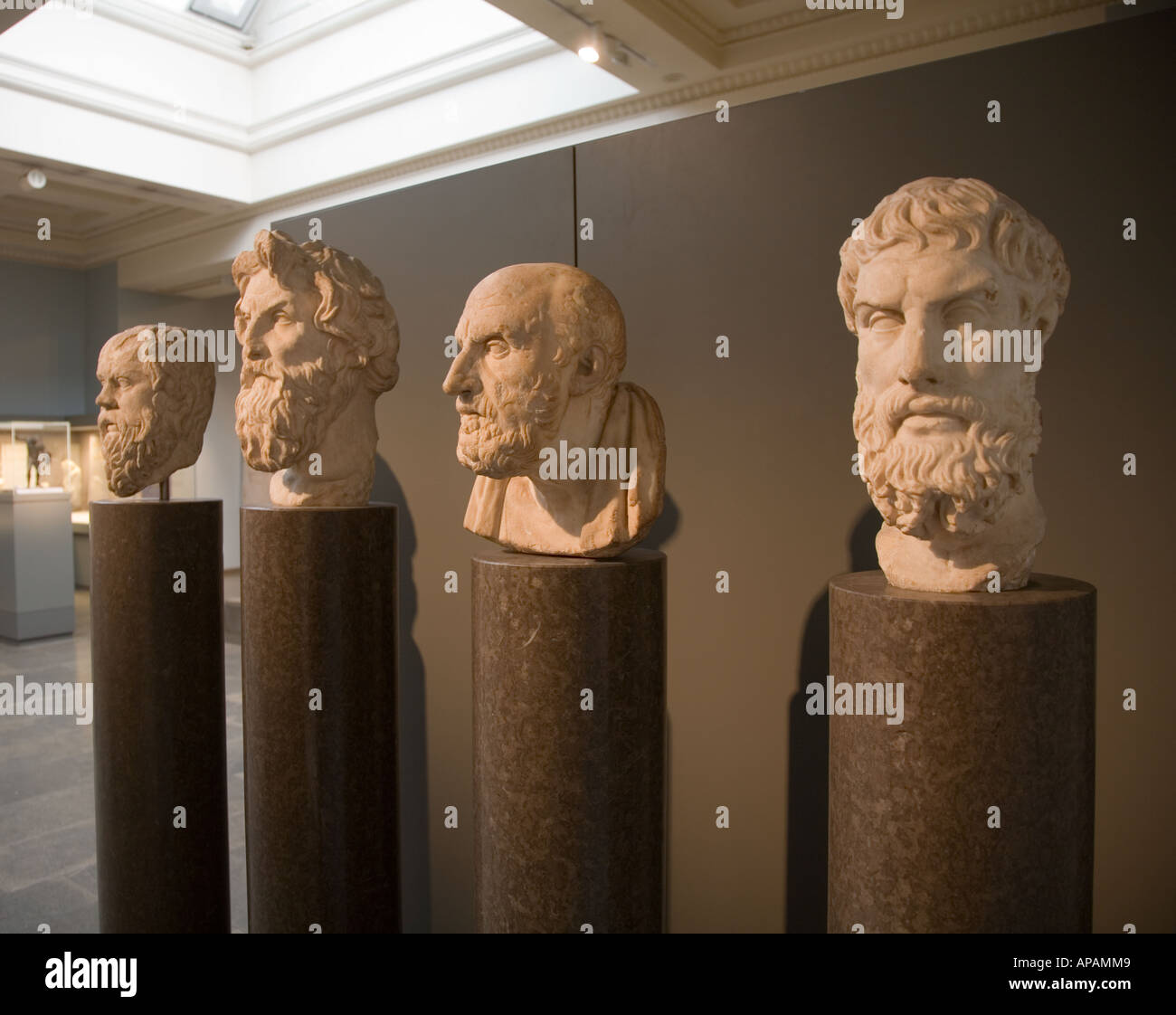 Marble Busts Of the Philosophers The British Museum London UK Europe - Stock Image