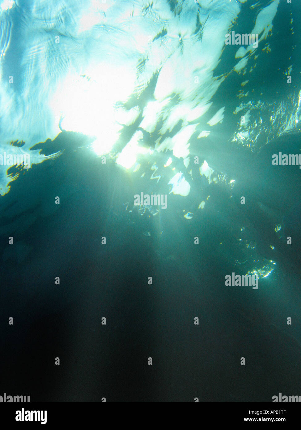 Surface of the sea taken from the seabed - Stock Image