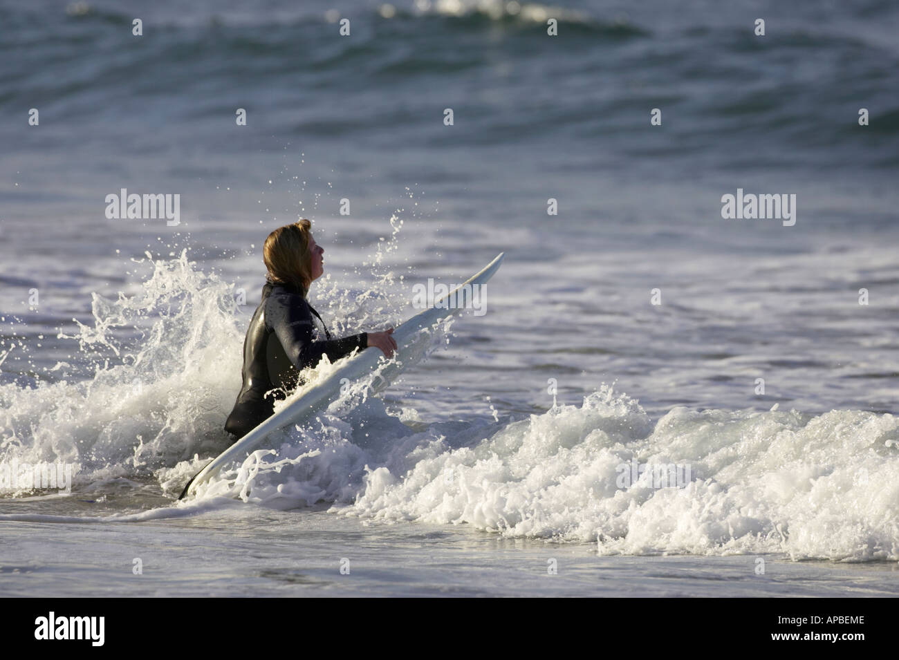 female surfer in wet suit with white board gets hit by a wave wading out to sea off white rocks beach portrush - Stock Image