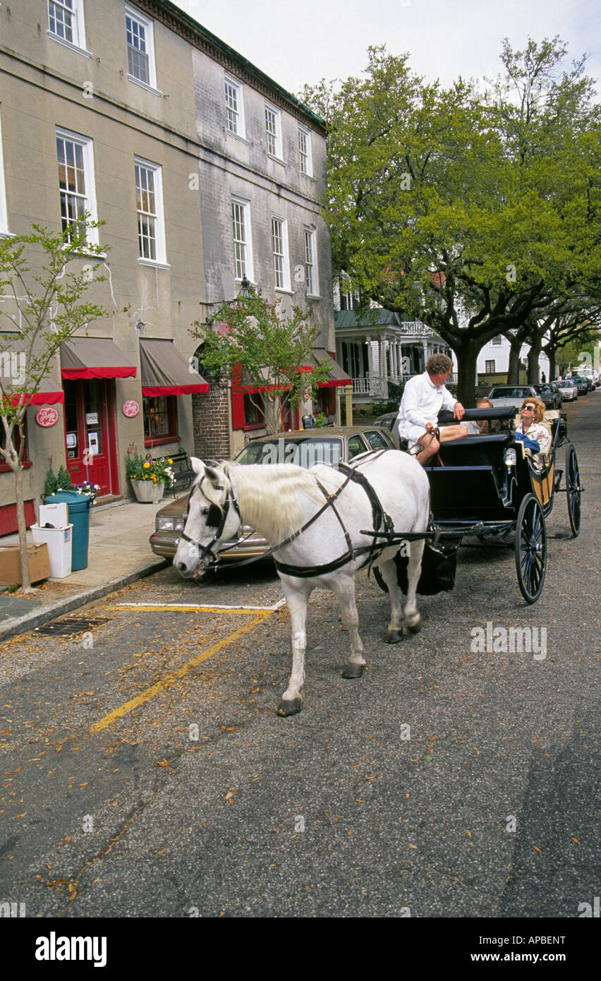 A horse drawn carriage carries visitors on tours of the historic district of Charleston - Stock Image