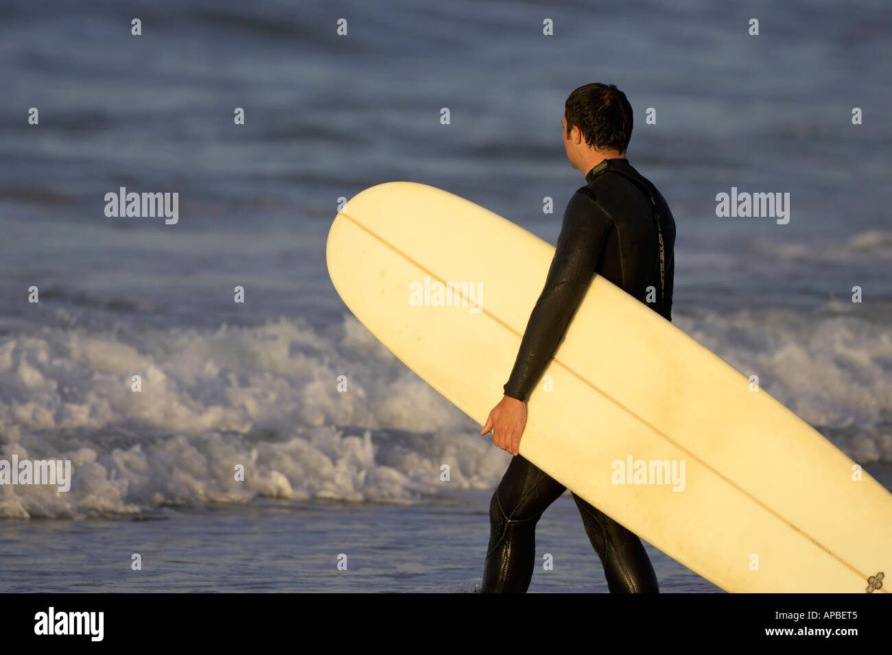 man in wet suit carrying surf board into the sea on white rocks beach portrush county antrim northern ireland Stock Photo