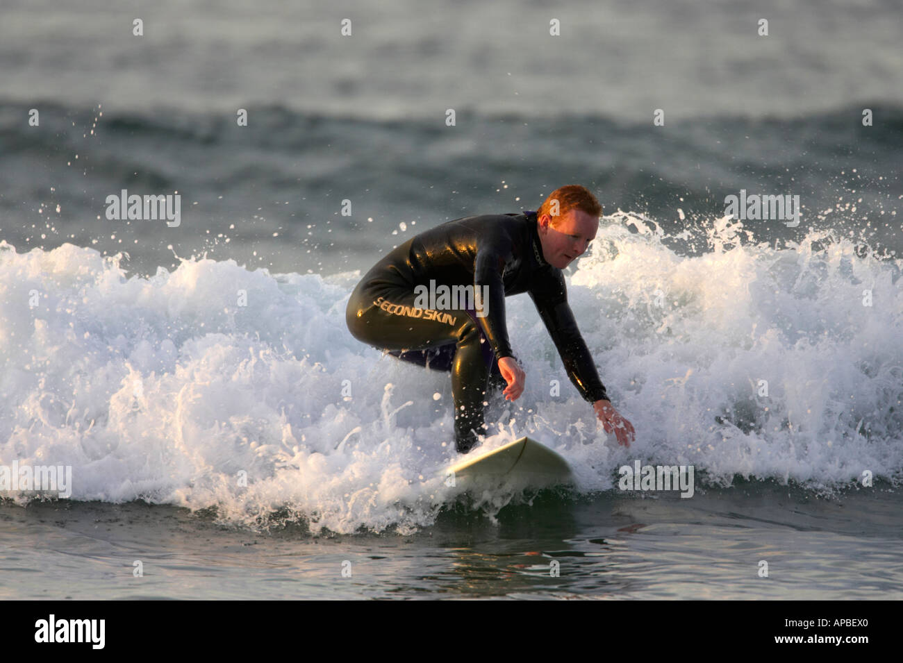 male surfer in wetsuit surfs on waves off white rocks beach portrush county antrim northern ireland Stock Photo