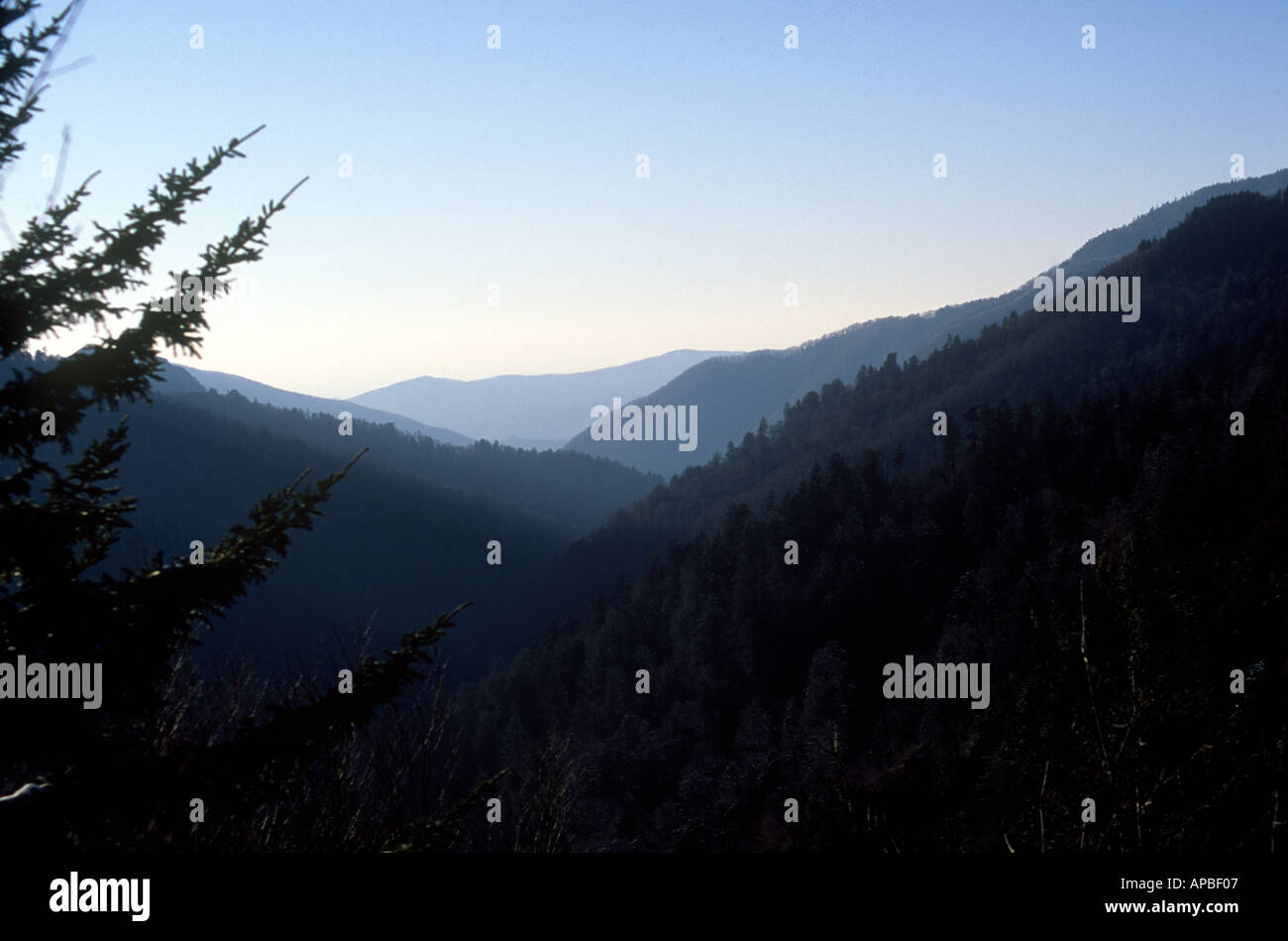 The great smoky mountains tennessee usa - Stock Image