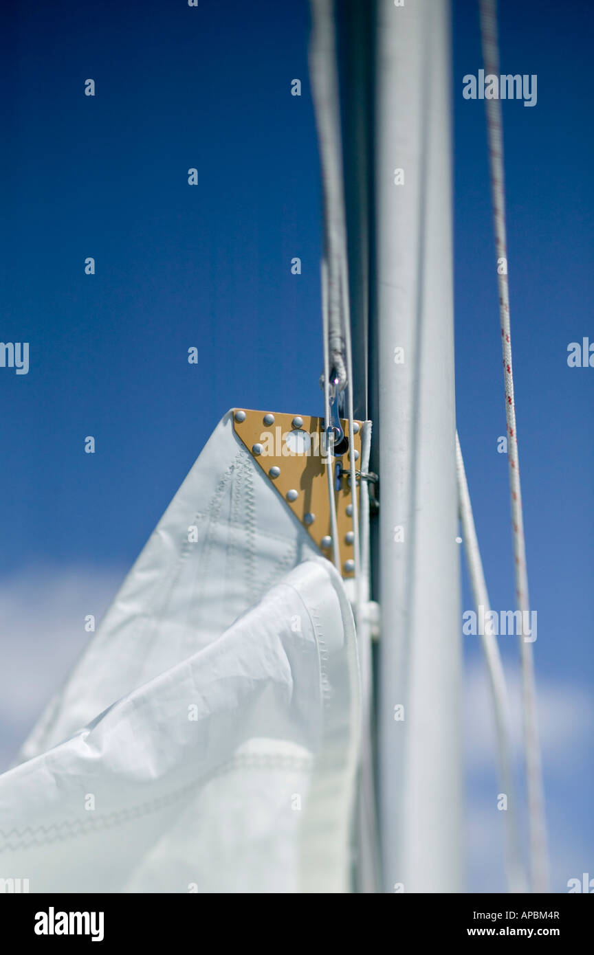 sail on mast of sailboat ready to hoist up with halyard - Stock Image