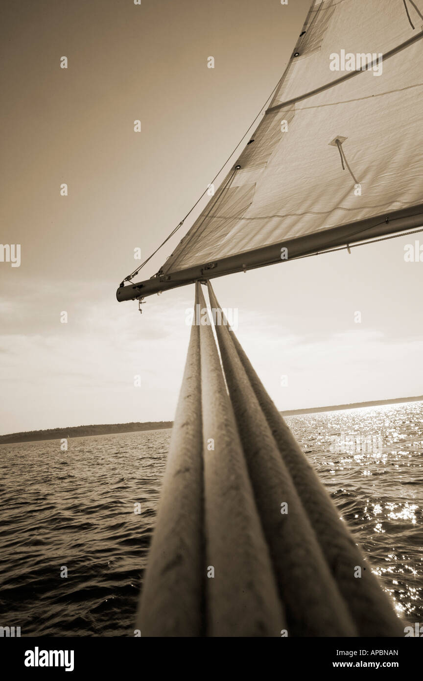 extreme angle of main sheet or rope on main sail on sail boat sepia tone vertical shapes journey - Stock Image