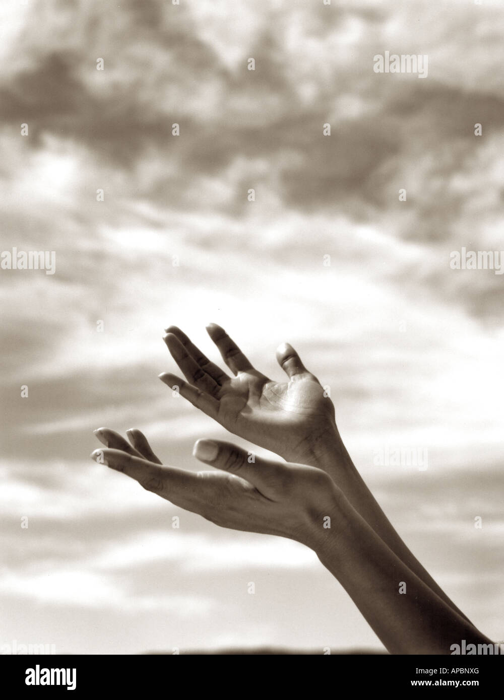 hands reach up to heavens and sky black and white reach religion praise believe desire beg plead accept warmth of - Stock Image