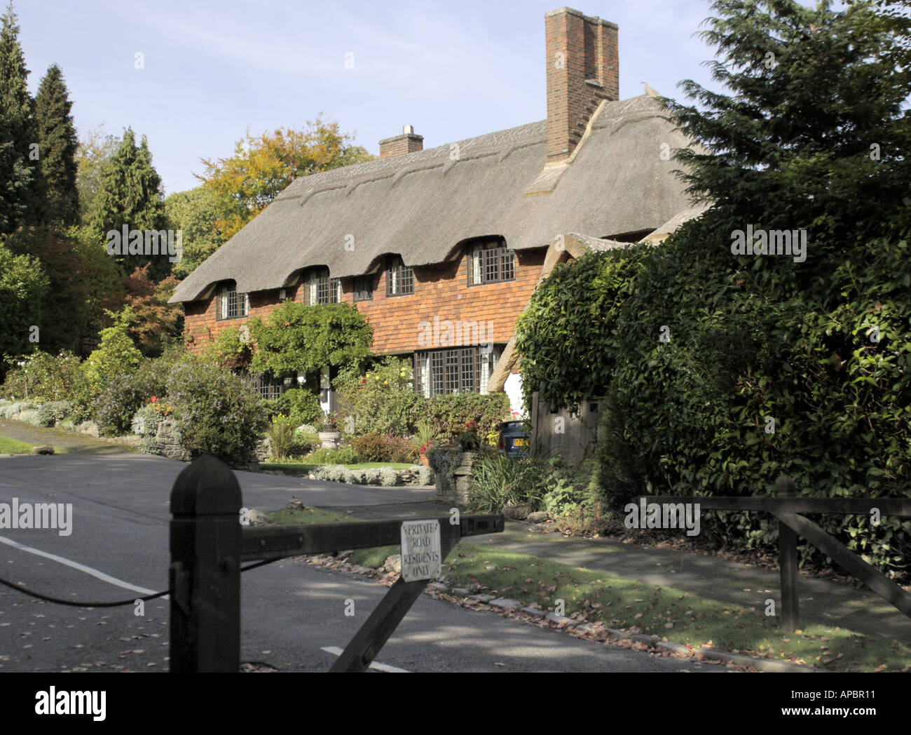A country thatched cottage down a private road in Esher Surrey - Stock Image