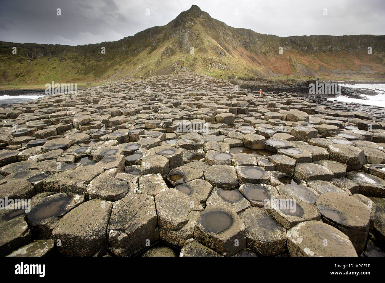 The Giant's Causeway is an area of about 40,000 interlocking basalt columns, the result of an ancient volcanic - Stock Image