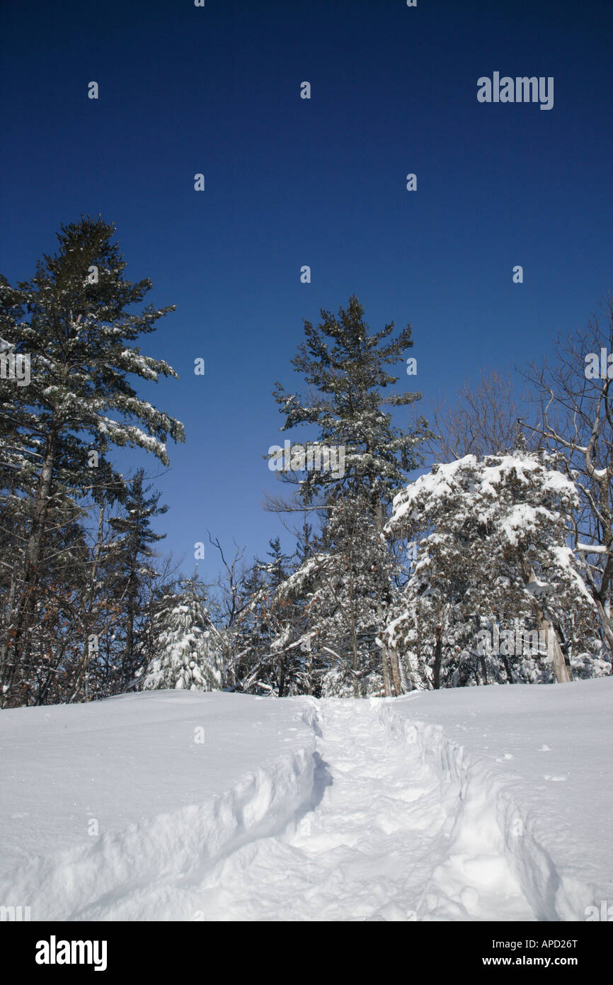 Pawtuckaway State Park during the winter months Located in Nottingham New Hampshire USA Stock Photo