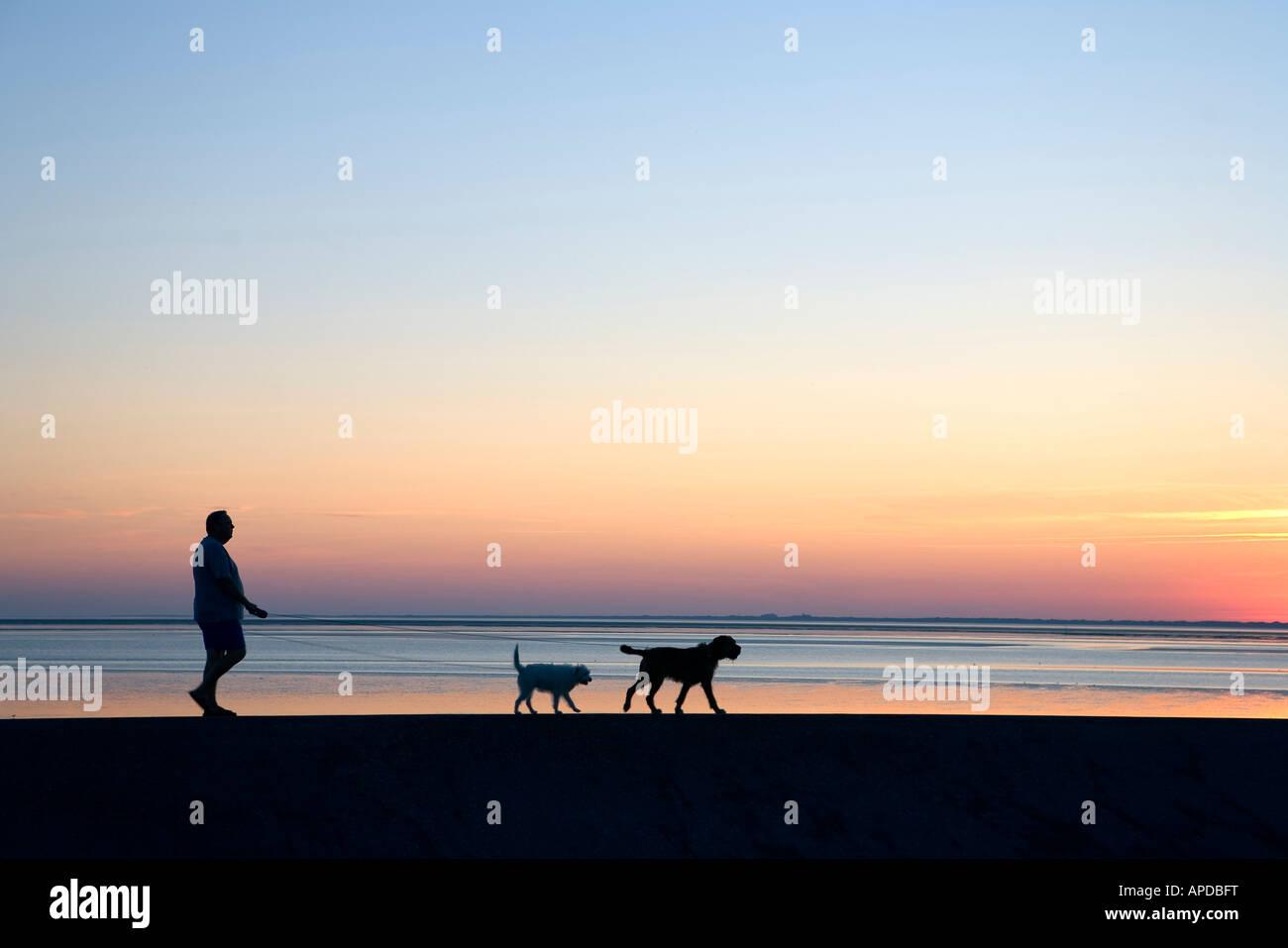 Coastline, Eastern Frisian Islands, Germany - Stock Image
