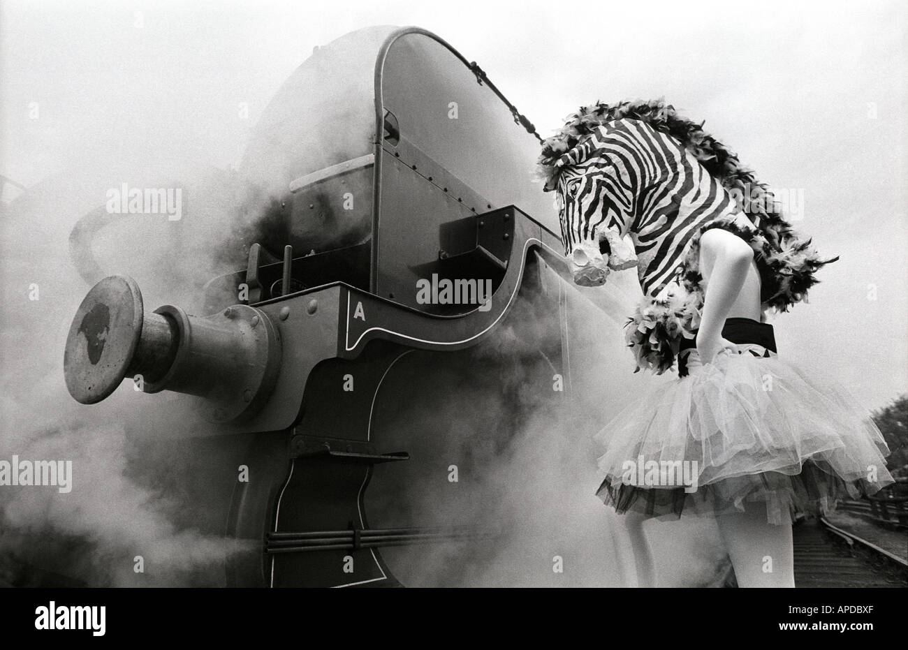 A ballet dancer dressed as a zebra confronts an old steam train. - Stock Image