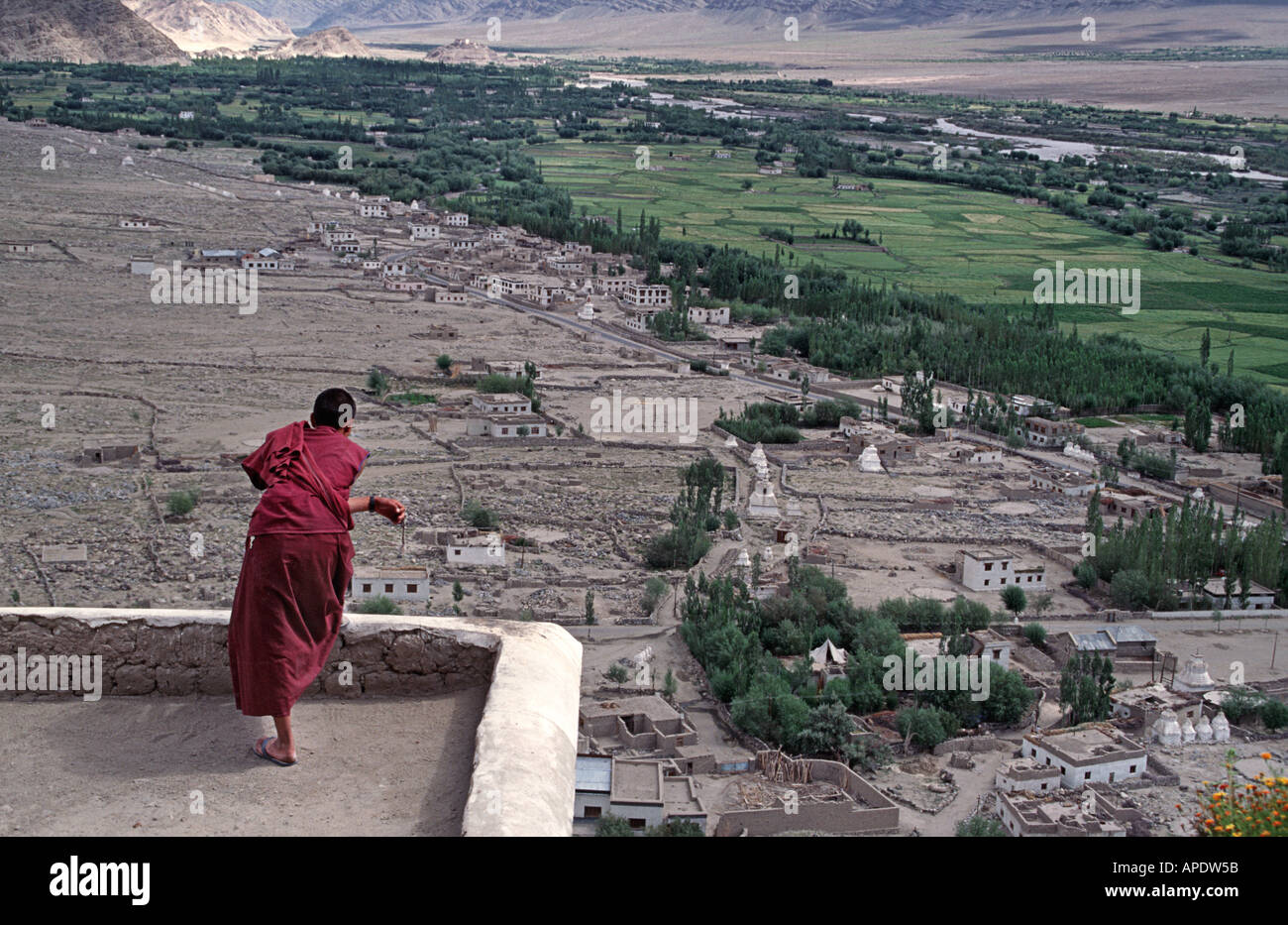 A young monk surveys the irrigated otherwise barren landscape of the surrounding valley near Leh Ladakh - Stock Image