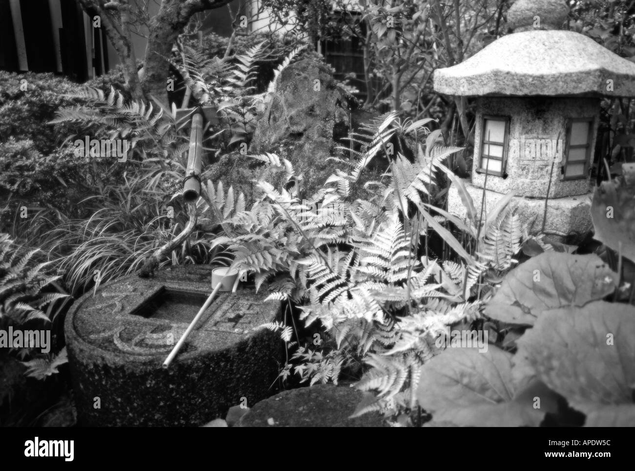 Lush grounds of a local ryokan Nara prefecture Japan Rendred in Infra Red style black and white Mysterious effect - Stock Image