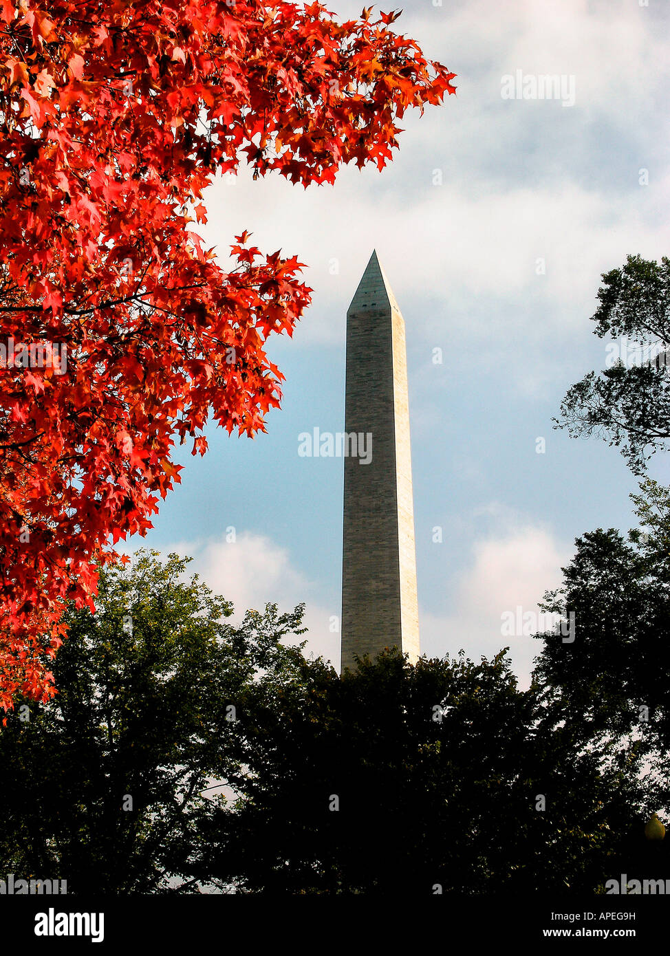 Washington Monument, fall framing, Washington DC Stock Photo ...