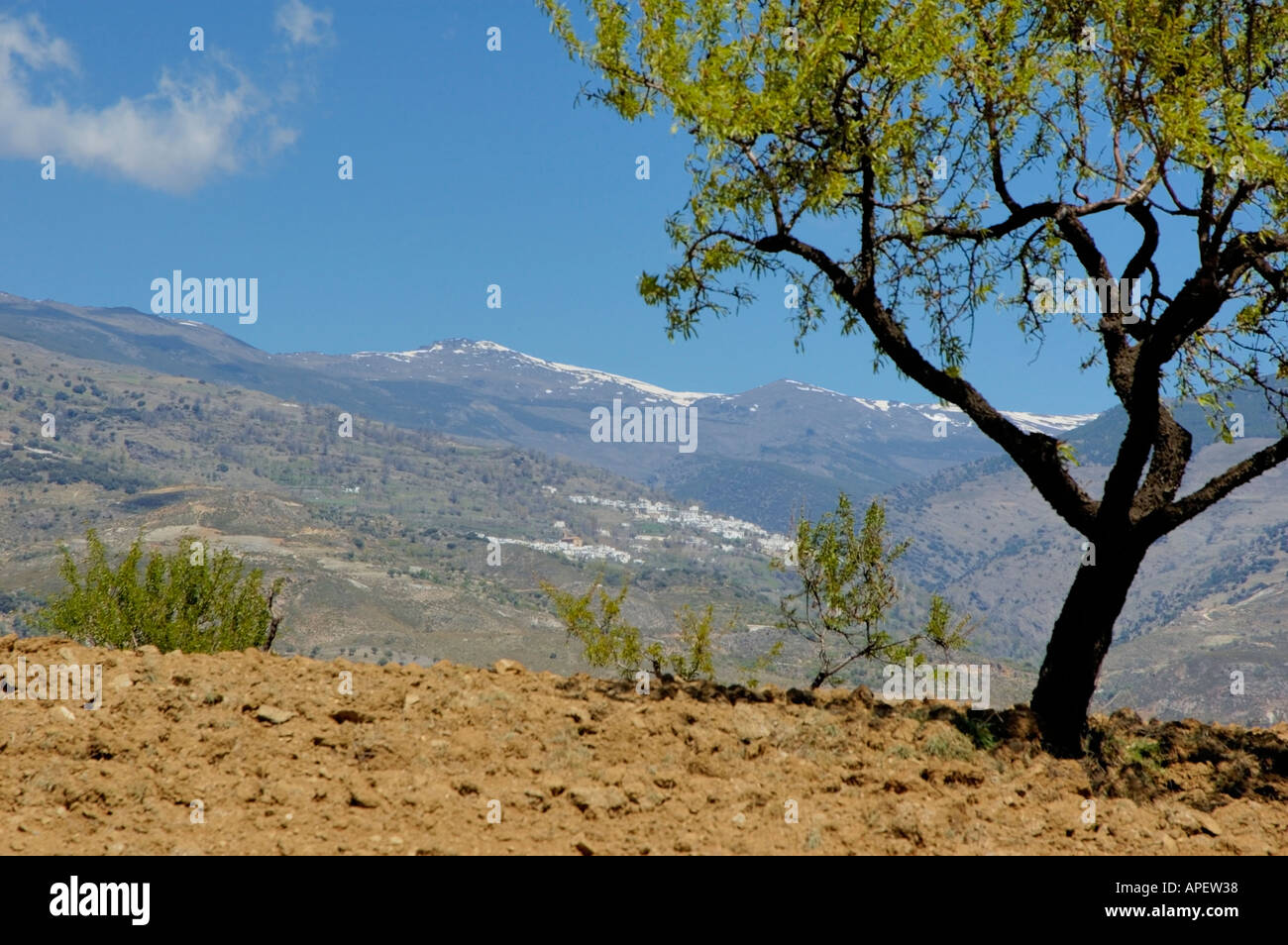 The Alpujarras Mountains, Andalucia, Spain - Stock Image