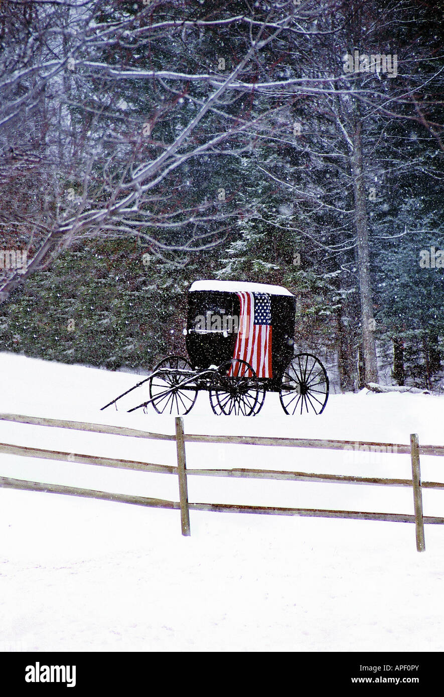 Old fashioned black horse carriage with American flag draped over it in a field of snow with fence (vertical). - Stock Image