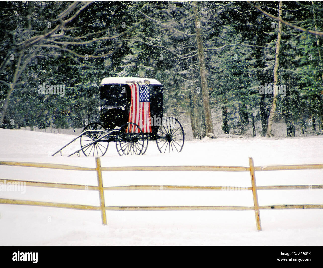 Old fashioned black horse carriage with American flag draped over it in a field of snow with fence (horizontal). - Stock Image