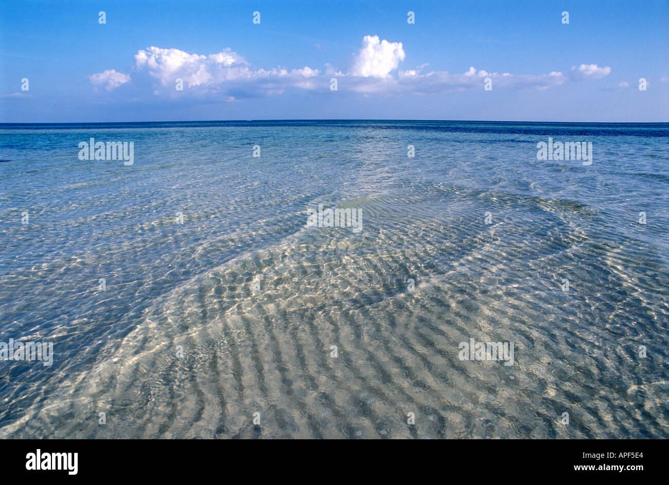 Crystal clear water at low tide Sand Spur Beach Bahia Honda State Park  Bahia Honda Key Florida 1db552237