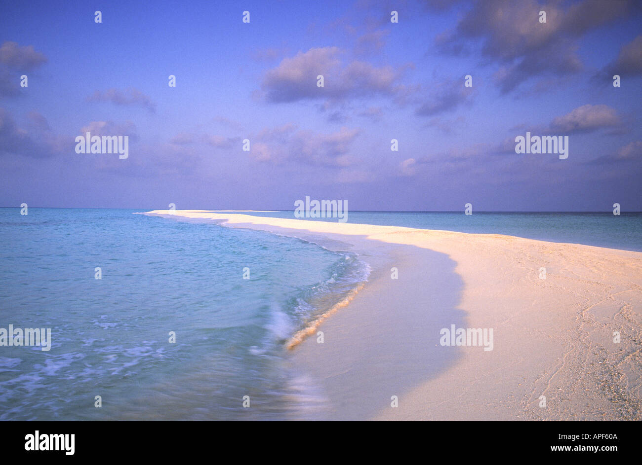 Tropical beach in  the Maldives with wave breaking on the soft white sand - Stock Image