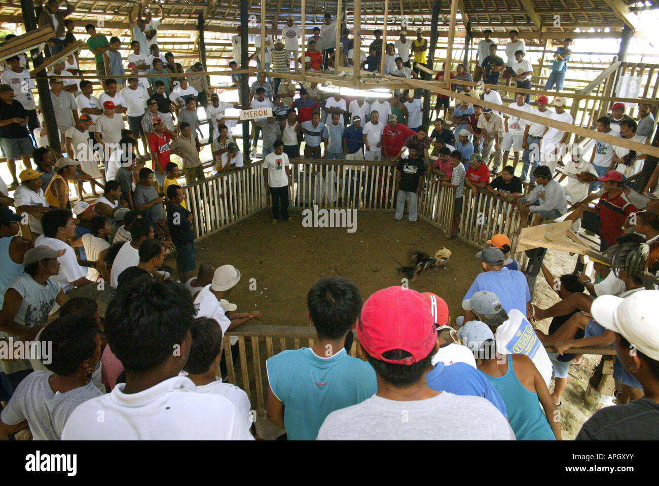 Filipinos watch a cockfighting bout at a rural cockhouse in Oriental Mindoro, Philippines. Stock Photo
