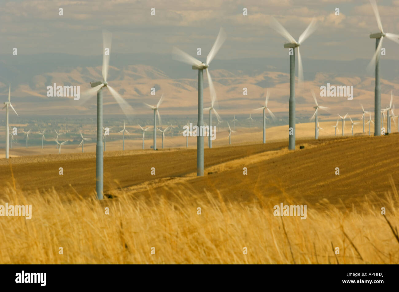 The propellers of wind turbines spin in the wind as they generate electricity in southeast Washington state - Stock Image
