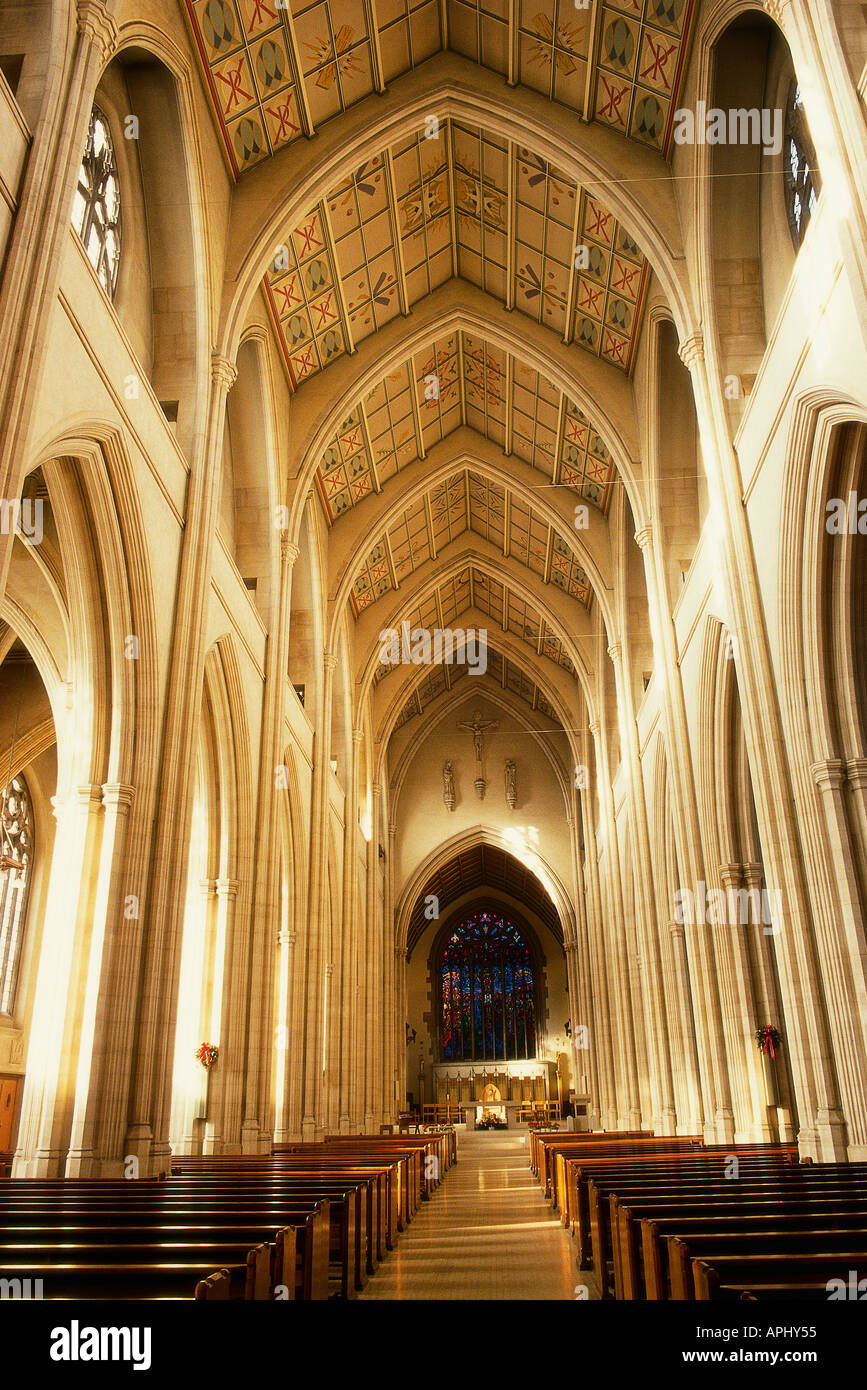 The nave of St George s Roman Catholic Cathedral London England Designed by Victorian architect Pugin it was opened in 1848 - Stock Image
