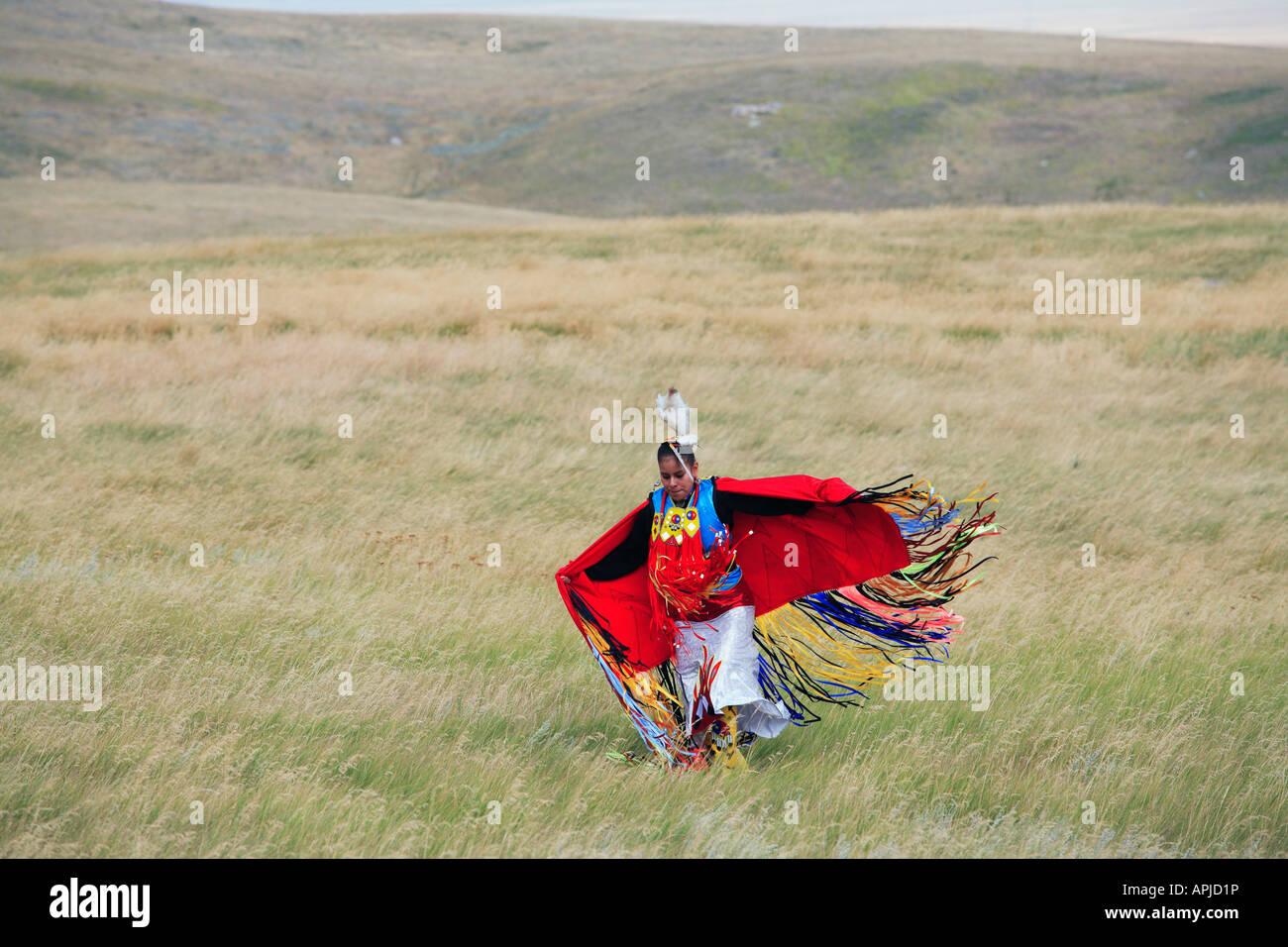 Mens Fancy Shawl Dancer of Plains Indian or First Nation traditional native warrior dancing - Stock Image