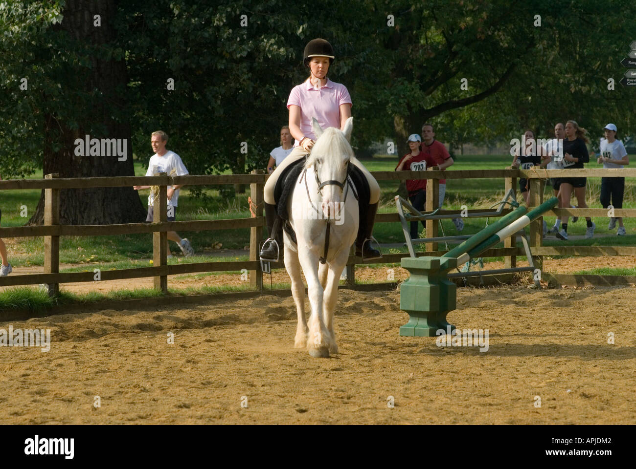Horse riding in 'Hyde Park' Schooling, London,  England - Stock Image