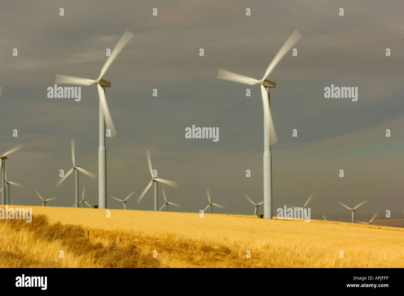Propellers of wind turbines spin in the wind as they generate electricity in southeast Washington State - Stock Image