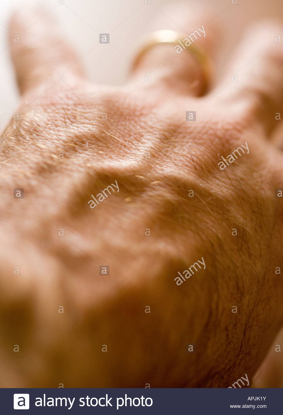 Back of male hand with veins showing - Stock Image