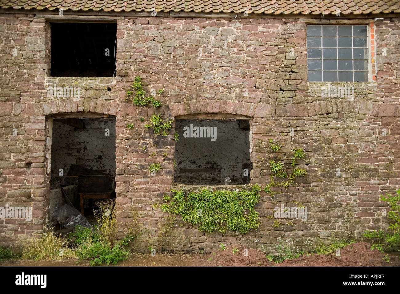 OLD DERELICT FARM BUILDING RIPE FOR POSSIBLE CONVERSION UK - Stock Image