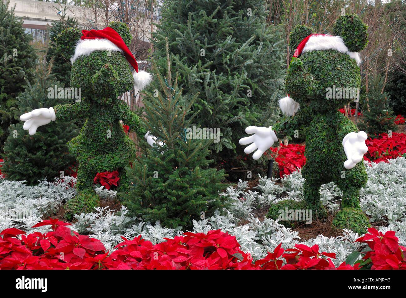 Christmas Topiary.Christmas Topiary At Epcor In Disney World Florida Usa Stock