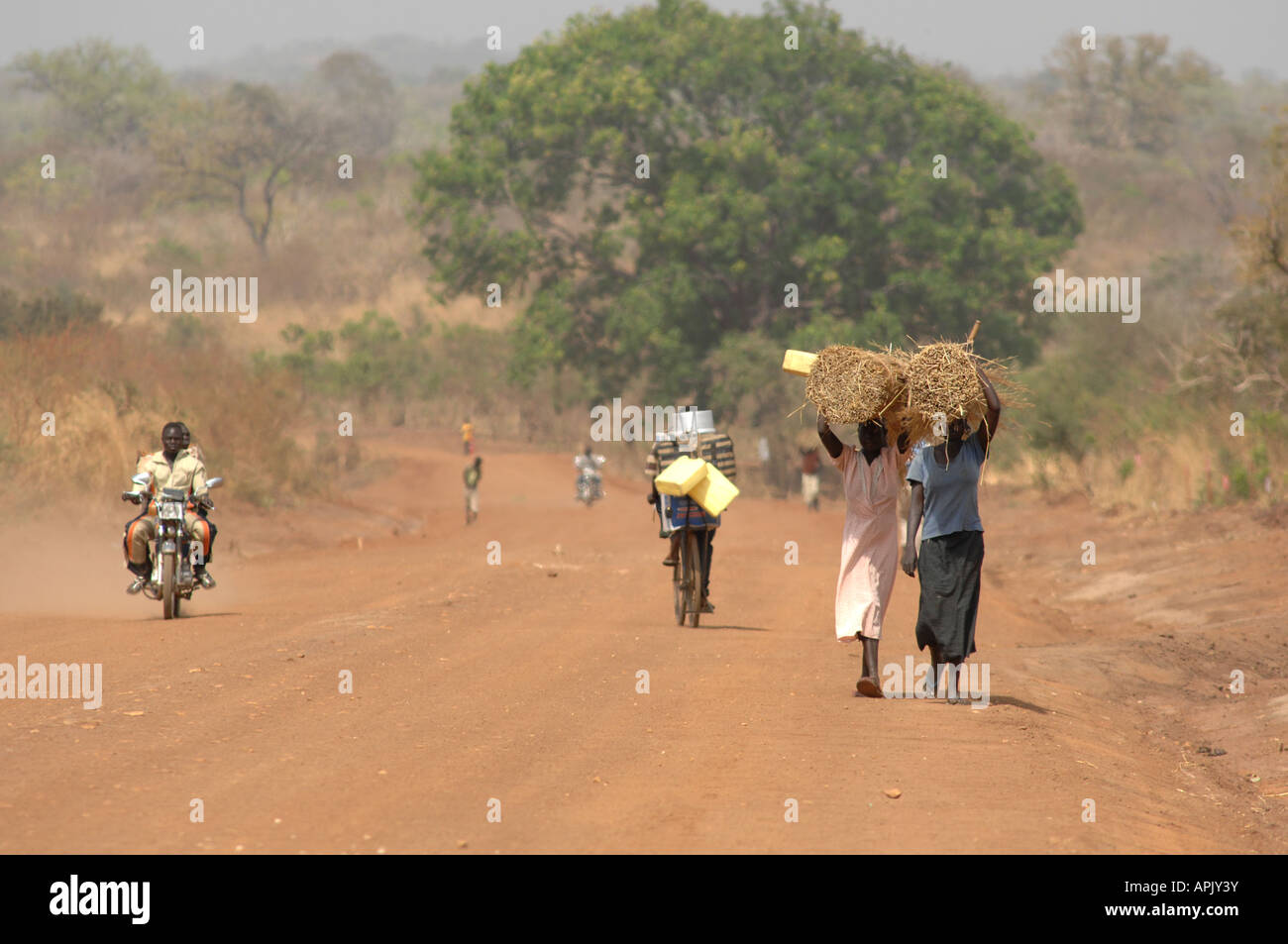 Two women carrying thatching materials on a dusty road in Southern Sudan - Stock Image