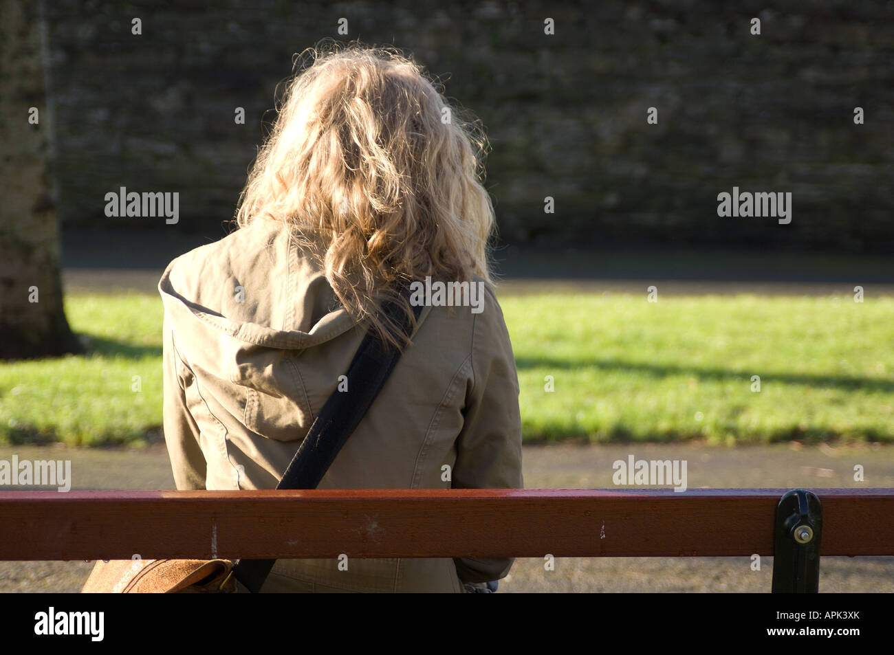 rear view young blonde woman sitting on park bench alone worried depressed anxious friendless abandoned by her boyfriend - Stock Image