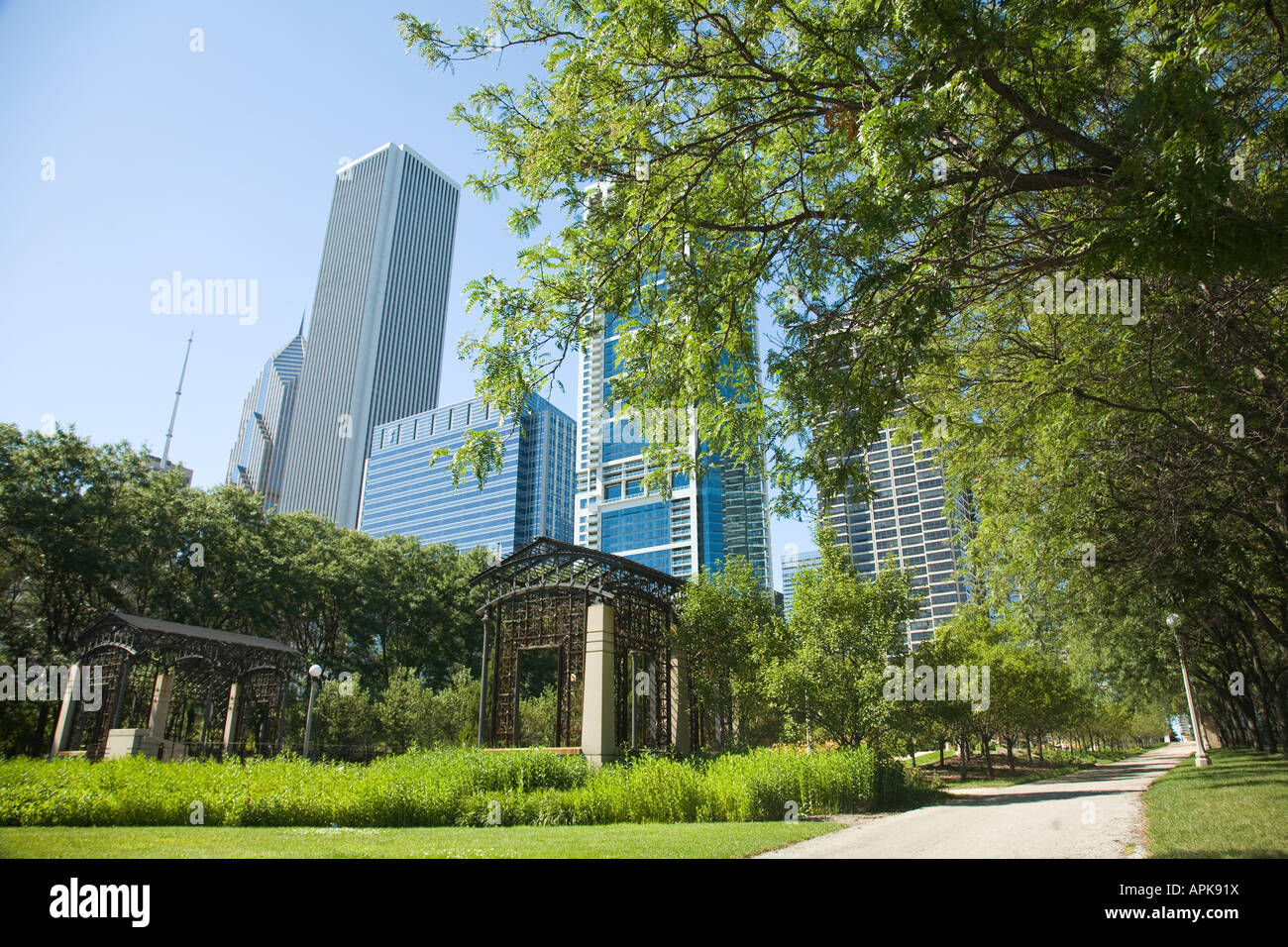 ILLINOIS Chicago Sidewalk in Cancer Survivors Garden in Grant Park city skyline highrise buildings open green urban Stock Photo