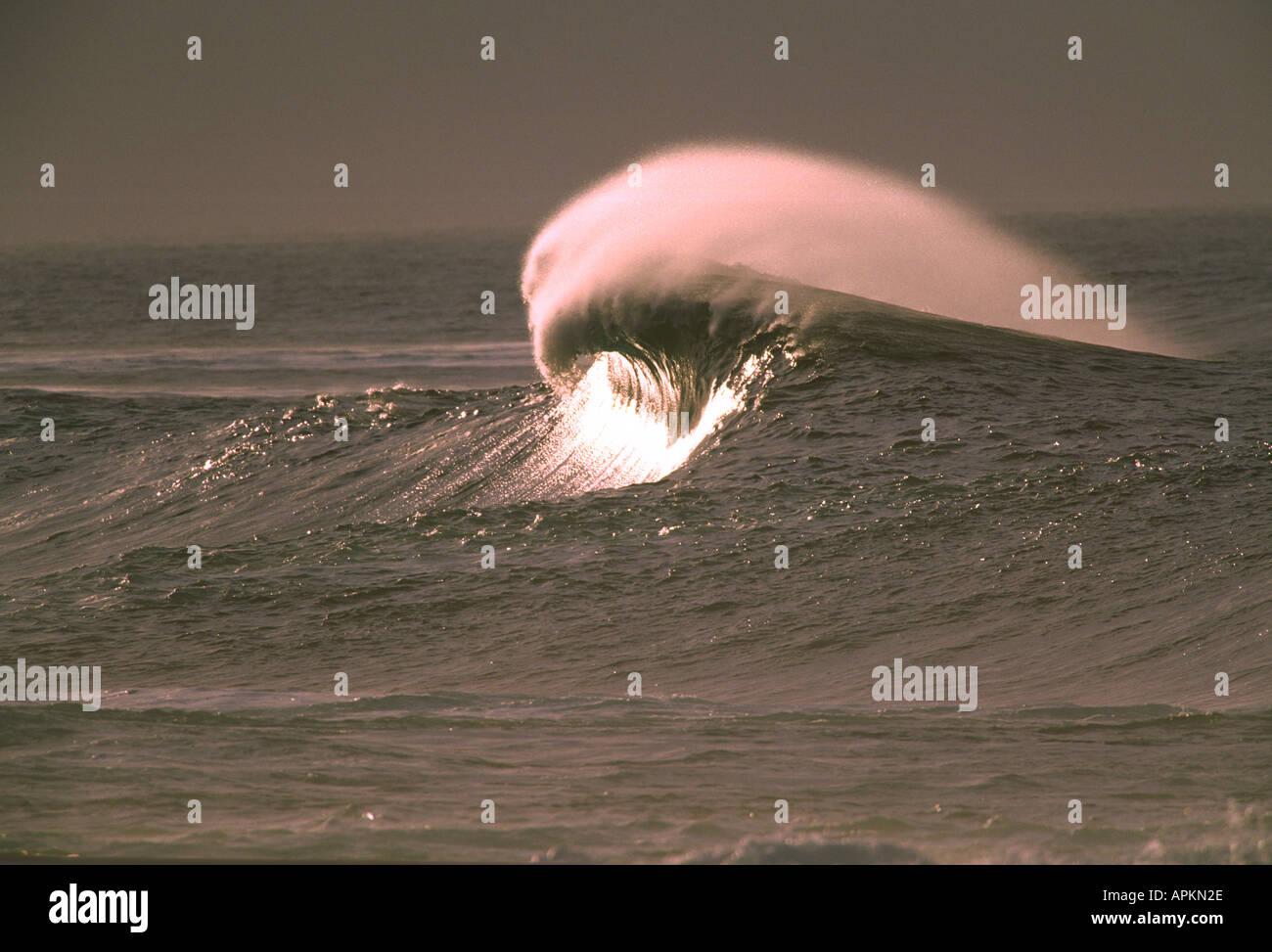 LA SANTA LANZAROTE CANARY ISLANDS - Stock Image