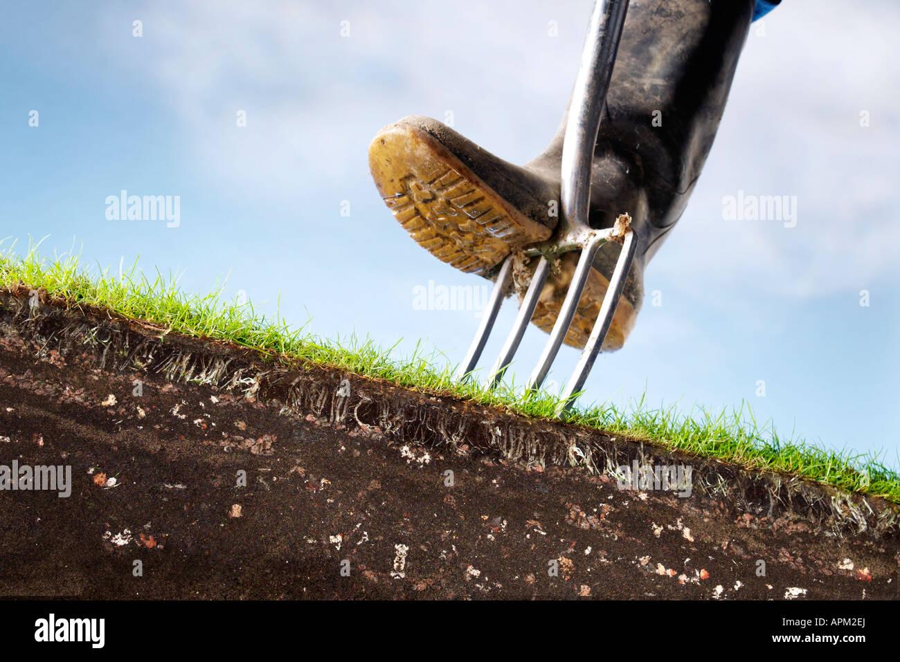 gardener - Stock Image