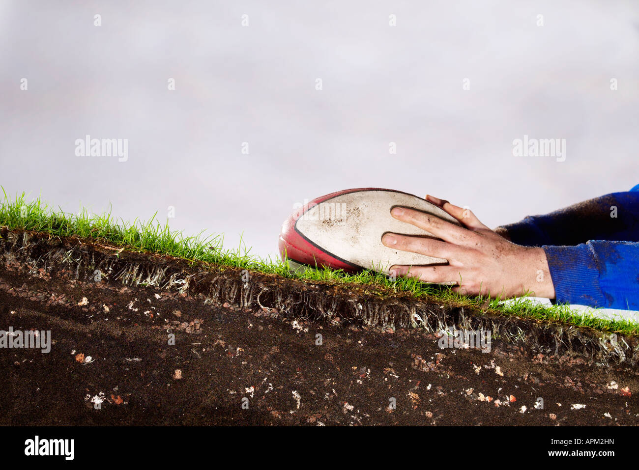 Roots of Rugby - Stock Image