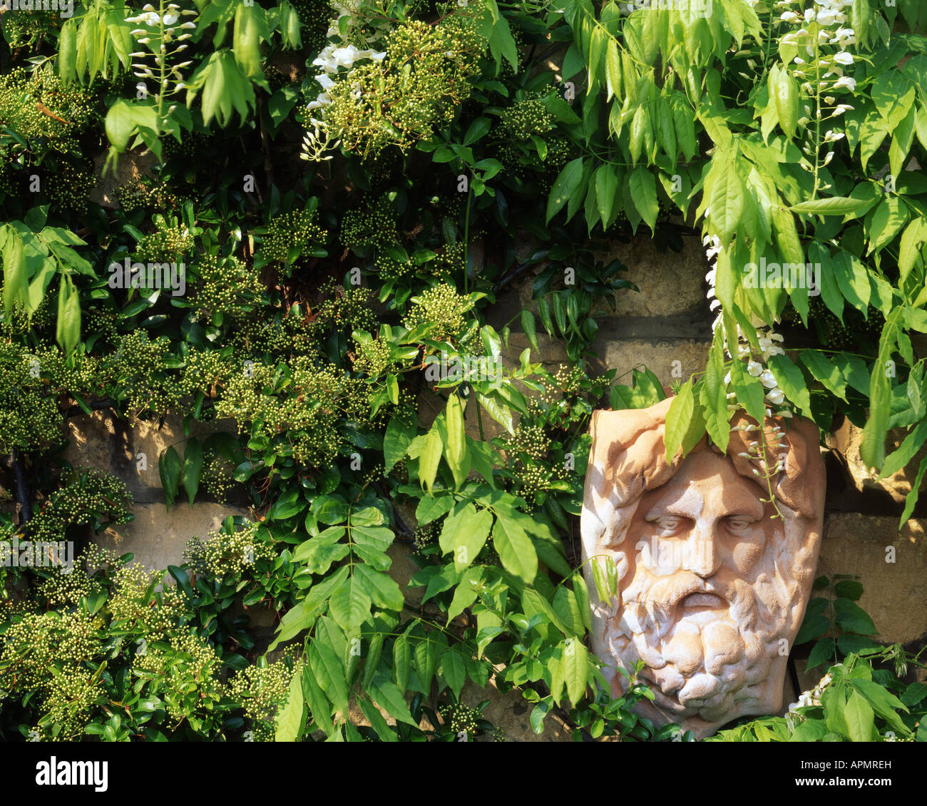 GB - GLOUCESTERSHIRE: Garden Detail at Parkgate (Cheltenham) - Stock Image