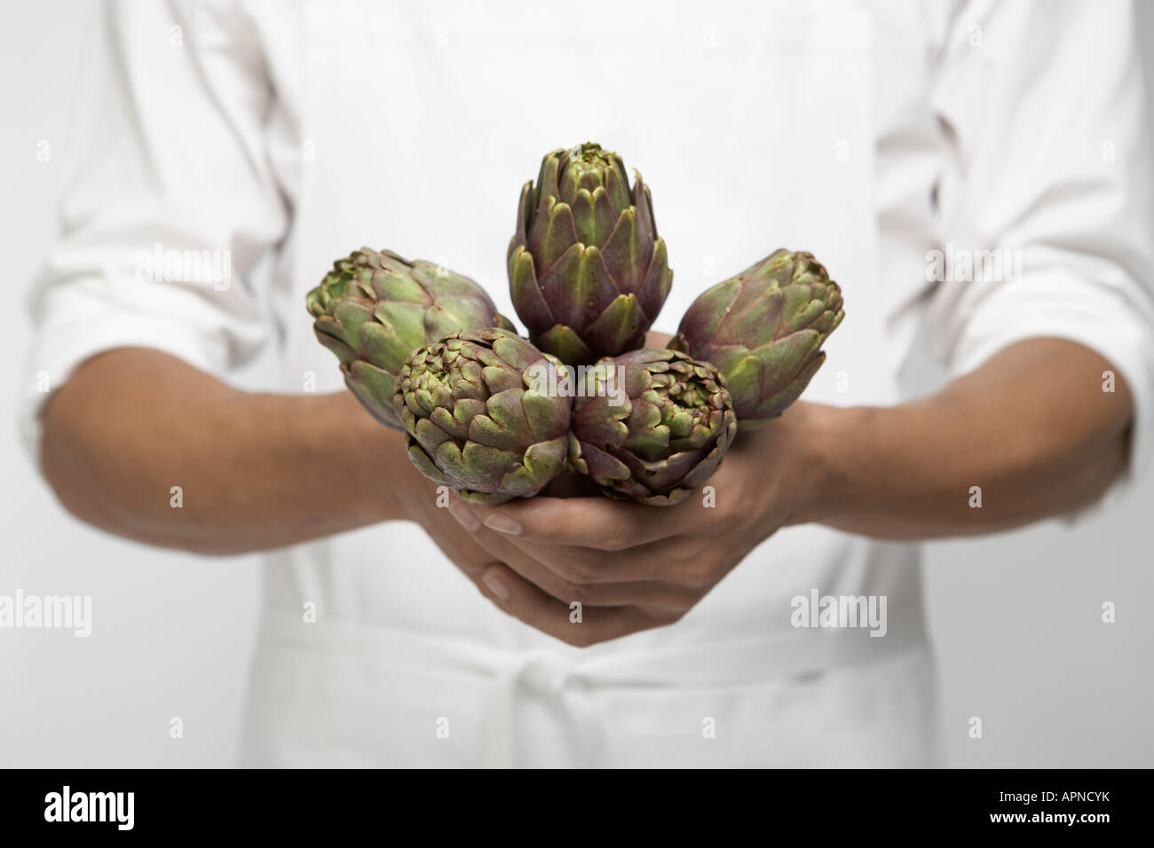 Chef holding artichokes (mid section) Stock Photo